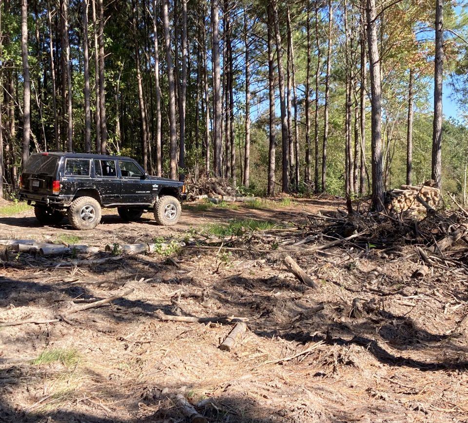 Suffolk VA - exploring some trails